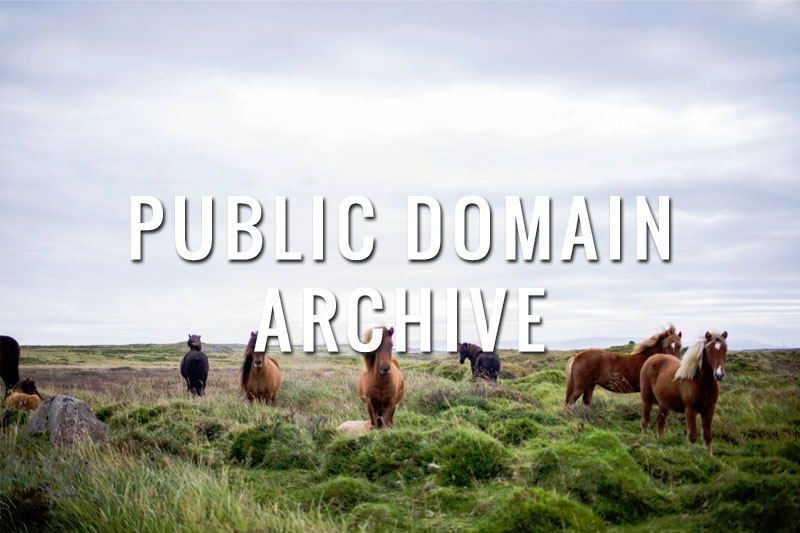 publicdomainarchive